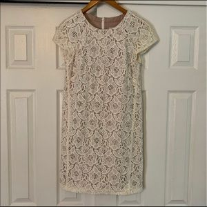 Ann Taylor LOFT White Lace Mini Dress Size 4 NWT